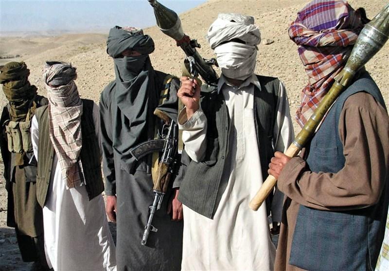 طالبان به همه نیروهایش دستور توقف حمله داد