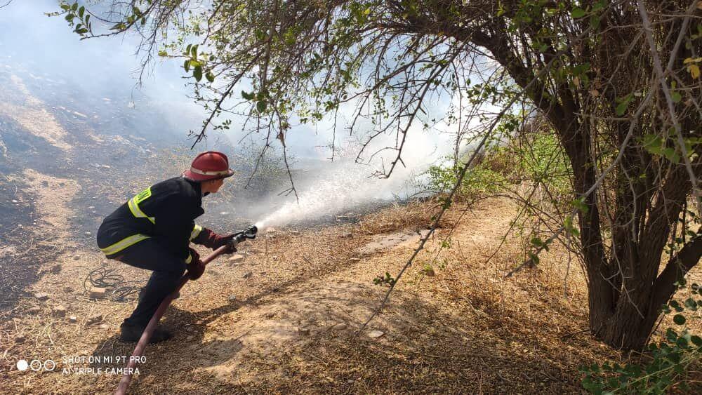 خبرنگاران آتش سوزی در بیشه زارهای شوشتر مهار شد
