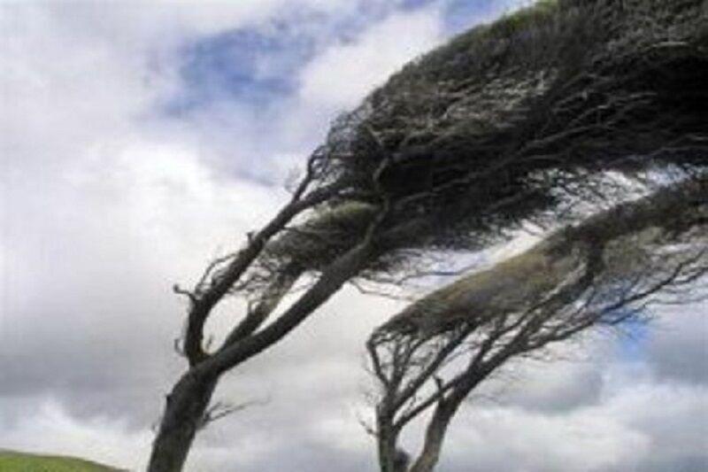 خبرنگاران پیش بینی وزش باد همراه با گرد و خاک در خراسان رضوی