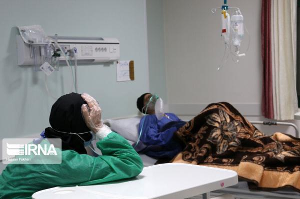 خبرنگاران 31 مبتلا به کرونا در مرکز درمانی دهلران بستری هستند